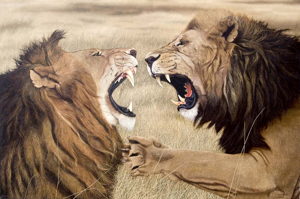 http://www.thoroughbredfineart.com/wp-content/uploads/2010/09/Fighting-Lions.jpg