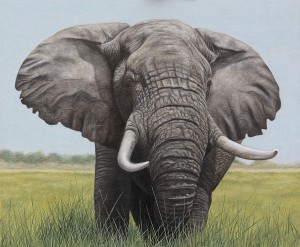 Bull Elephant oil painting