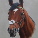 """Frankel. oil painting on panel.""""horse portraits"""" """"pet portraits"""" """"dog portraits"""" """"racehorse painting"""""""
