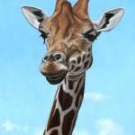 Giraffe oil painting.