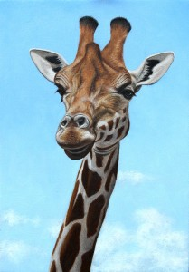 Giraffe oil painting.