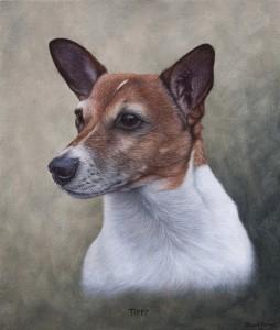 Jack-Russell-oil-portrait