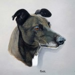 dog-portraits-in-oils