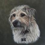 dog-portraits-oil
