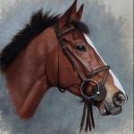 Kauto Star portrait