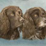 pet-portraits-in-oils