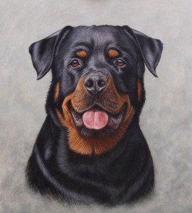 rottweiler oil painting